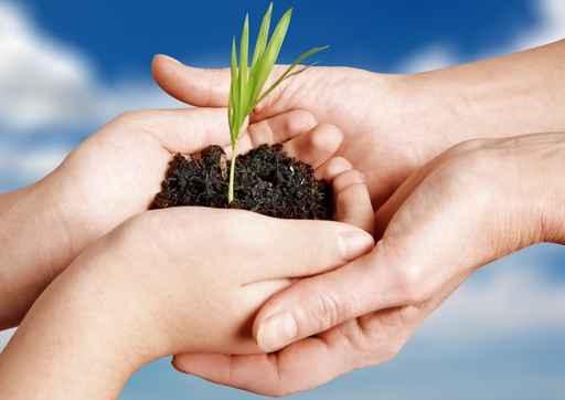 Só a perseverança garante uma grande colheita. Temos que ter fé em plantar. Só em Cristo teremos uma boa colheita. Espere com paciência e receba o que Deus tem para você.