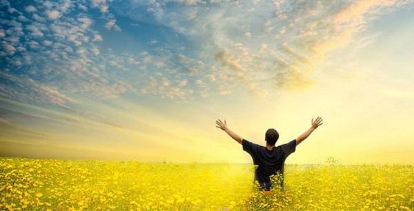 Lute! Persevere! Não desanime! Converse com as pessoas que estão bem espiritualmente e de paz. Os que confiam no Senhor cantam a sua vitória alegremente. Levante a cabeça! Olhe para o alto e para a frente!  Saia do desânimo! Um coração alegre é um bom remédio para a nossa alma(Provérbios 17:22).